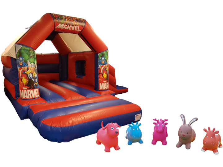Junior Bouncy Castle Slide Party Package